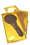 Chocolade Sleutel_